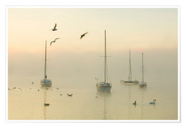 Poster Premium  A misty morning over Lake Windermere Lake District
