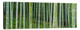 Tela  Green bamboo forest in Kyoto, Japan - Jan Christopher Becke