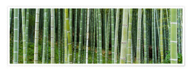 Poster Premium  Green bamboo forest in Kyoto, Japan - Jan Christopher Becke