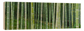 Stampa su legno  Green bamboo forest in Kyoto, Japan - Jan Christopher Becke