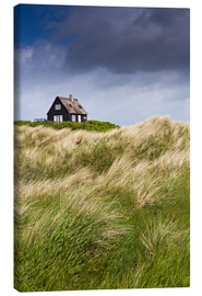 Stampa su tela  Cottage in the dunes during storm