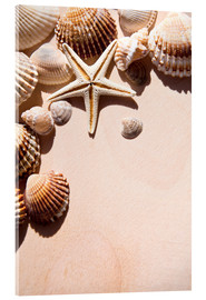 Stampa su vetro acrilico  Starfish and shells