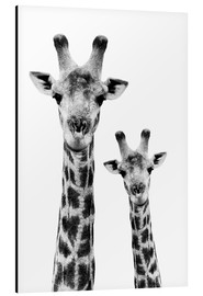 Alluminio Dibond  Safari Profile Collection - Portrait of Giraffe and Baby White Edition IV - Philippe HUGONNARD