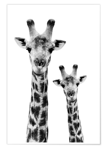 Poster Safari Profile Collection - Portrait of Giraffe and Baby White Edition IV