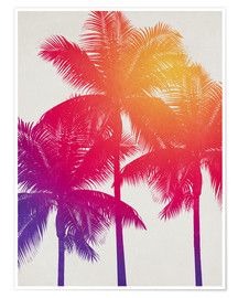 Poster Premium palm tree colours