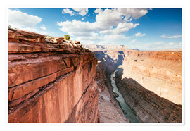 Poster Premium  Sunset over the Colorado river, Grand Canyon, USA - Matteo Colombo