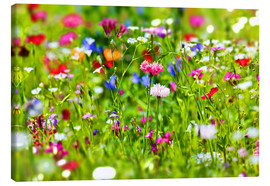 Stampa su tela  Flower meadow - fotoping