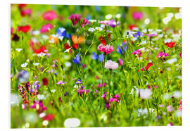 Forex  Flower meadow - fotoping