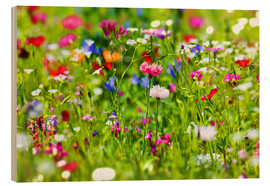 Legno  Flower meadow - fotoping