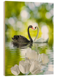 Legno  Two swans in love