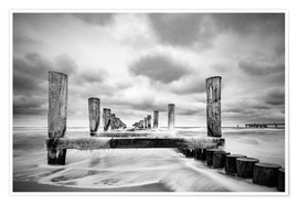 Poster Premium Groynes on the Baltic Sea coast in Zingst, Germany