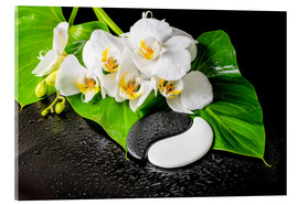 Vetro acrilico  White orchids and Yin-Yang stones