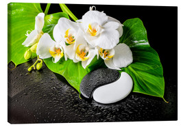 Tela  White orchids and Yin-Yang stones