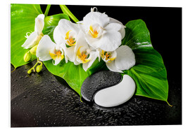 White orchids and Yin-Yang stones