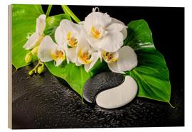 Legno  White orchids and Yin-Yang stones