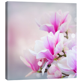 Stampa su tela  Magnolia flowers on bokeh background