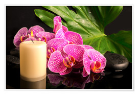 Poster Premium Zen still life with orchids