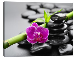 Stampa su tela  Basalt stones, bamboo and orchid