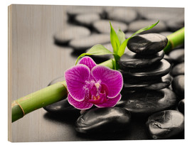 Stampa su legno  Basalt stones, bamboo and orchid