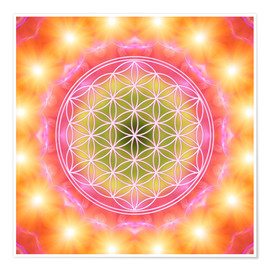Poster  Flower of Life - Heart Energy - Dolphins DreamDesign