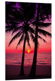 Palm trees and tropical sunset