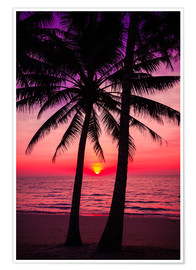Poster  Palm trees and tropical sunset