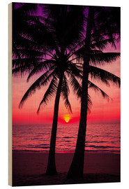 Stampa su legno  Palm trees and tropical sunset