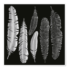 Poster Premium  Feathers in silver