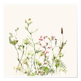 Poster Premium  Wild Flower Meadow - Dearpumpernickel