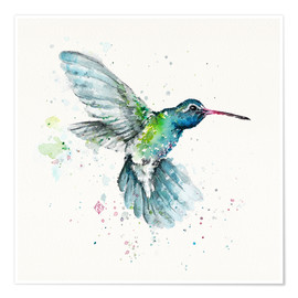 Poster Premium  Hummingbird Flurry - Sillier Than Sally