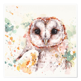 Poster Premium  Barn Owl - Sillier Than Sally