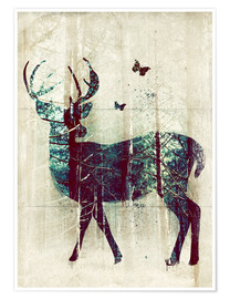 Poster Premium  Deer in the Wild - Sybille Sterk