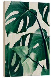 Legno  Monstera - Uma 83 Oranges