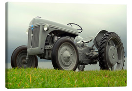 Stampa su tela  The Ford 2N tractor