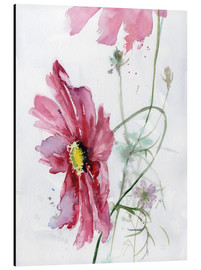 Stampa su alluminio  Cosmos flower watercolor - Verbrugge Watercolor
