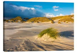 Stampa su tela  Dunes on the island of Amrum, North Sea