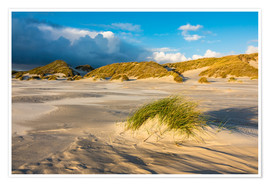 Poster Premium  Dunes on the island of Amrum, North Sea