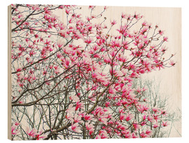 Stampa su legno  Pink Blooming