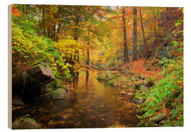 Stampa su legno  Little brook in autumn forest - Dieter Meyrl