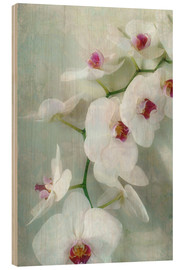 Stampa su legno  Composition of a white orchid with transparent texture - Alaya Gadeh