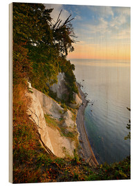 Stampa su legno  Chalk cliffs in the morning light - Andreas Vitting
