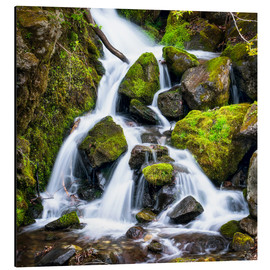 Stampa su alluminio  Waterfall in the forest near Triberg, Black Forest - Jan Christopher Becke