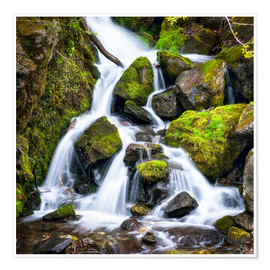 Poster Premium  Waterfall in the forest near Triberg, Black Forest - Jan Christopher Becke