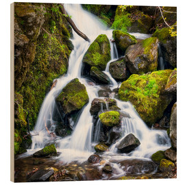 Stampa su legno  Waterfall in the forest near Triberg, Black Forest - Jan Christopher Becke