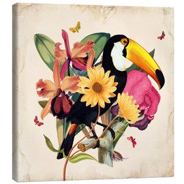 Stampa su tela  Oh My Parrot XII - Mandy Reinmuth