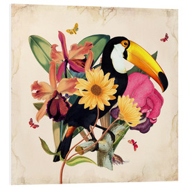 Stampa su PVC  Oh My Parrot XII - Mandy Reinmuth