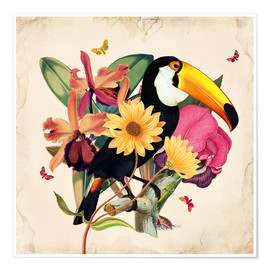 Poster Premium  Oh My Parrot XII - Mandy Reinmuth