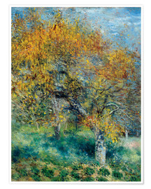 Poster Premium The Pear Tree