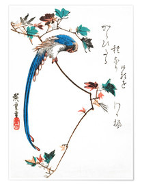 Poster Premium Blue magpie on maple branch