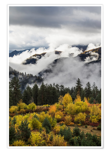 Poster Premium Clouds in the forested valleys between Mestia and Ushguli, Upper Svaneti, Samegrelo-Zemo Svaneti, Ge